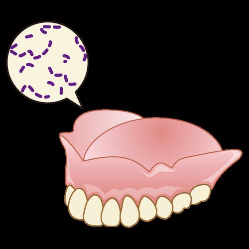 入れ歯を手入れする理由
